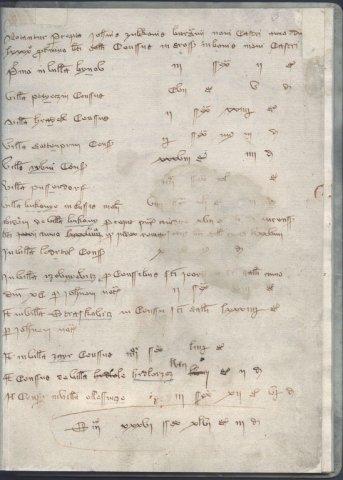 Reprodukce nejstaršího písemného záznamu o Strážkovicích z roku 1391