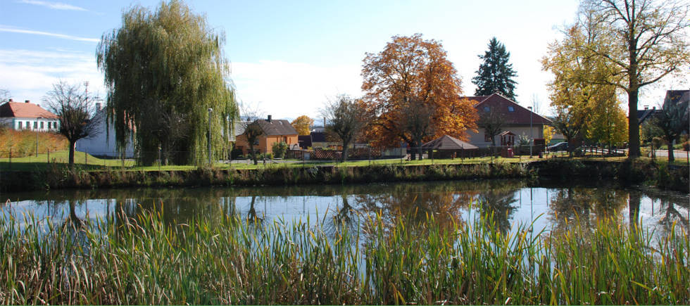Pohled na obec Strážkovice